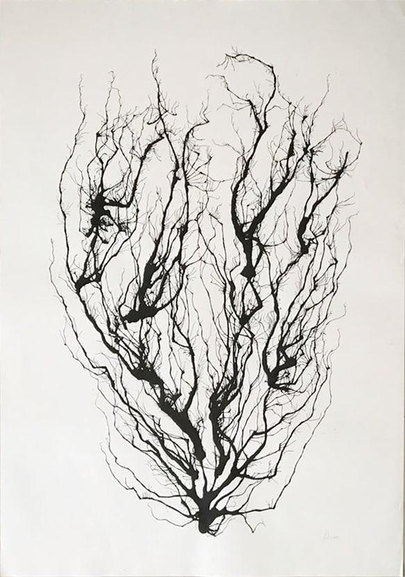 Bruno Alheiros Possibilidades arte plural - Arte Plural e a mostra Possibilidades